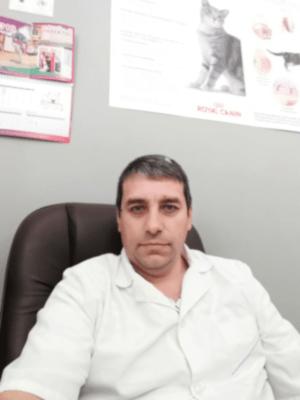 Ветеринарный врач-ортопед в Королёве - Попа Валерий Сергеевич