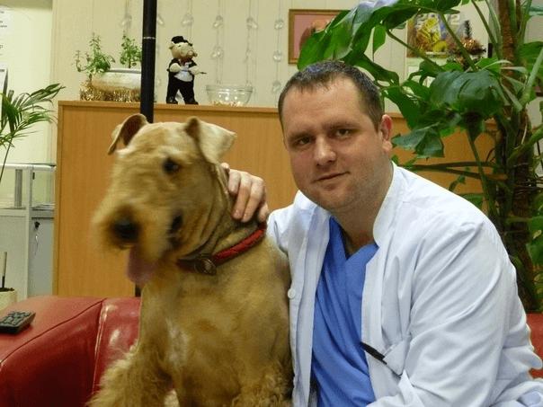 Ветеринарный врач - дерматолог в Одинцово Московской области - Юрасов Александр Валерьевич